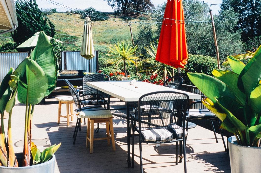 Money-Saving Tips For Garden Renovation